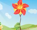 Flor Mágica