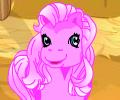 Pony kinder