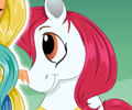 Pony Princess Hairstyles