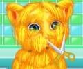 Talking Ginger Shaving